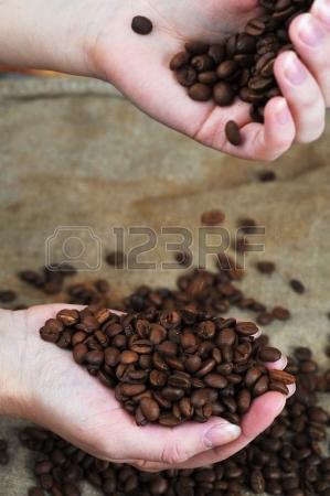 19858842-frauen-hande-f-hlen-gerostete-kaffeebohnen-close-up